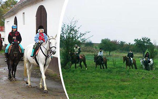 Last Minute: Letní dětský tábor u koní! V krásné přírodě nedaleko Prahy