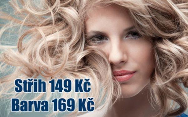Profesionální kadeřnické služby na I.P.Pavlova!!! Střih a Melírování od 149 Kč, Barvení od 169 Kč!!! Lazebnické studio Lucie v centru Prahy.