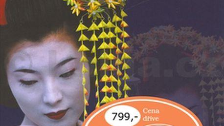 Gejša - Tajemný, fascinující svět dávných japonských tradic