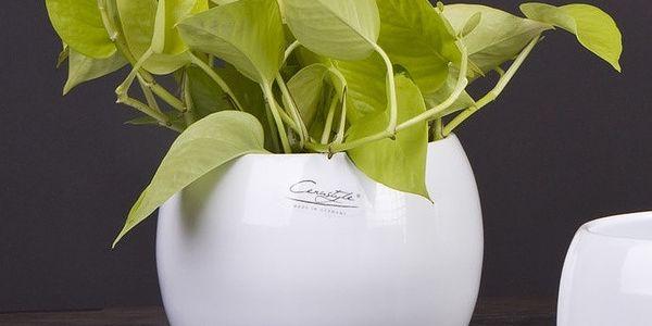 Sada 2 bílých květináčů Arctic, 16 cm