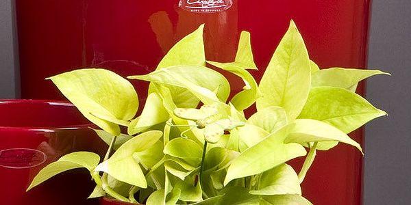 Květináč Ovale červený, 23 cm