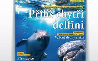 Předplatné časopisu Příroda – kompletní ročník 2013! 1 000 dechberoucích stran ročně, nádherné fotografie i poutavé články o všem, co vás v přírodě zajímá