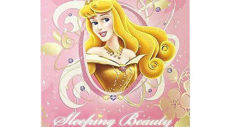 Sešit Princess Sešit A4 čtverečky 80 stránek růžová