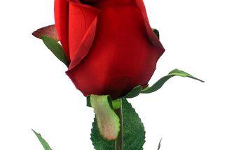 Umělé květiny - červené růže, zcela autentický vzhled