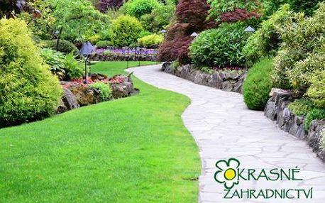 Sadba pro vaši zahradu: túje a stromky s 50% slevou