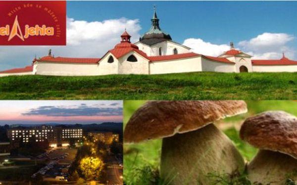 VYSOČINA - Hotel Jehla*** 3 dny s polopenzí pro 2 . Ideální pro cyklisty a houbaře.