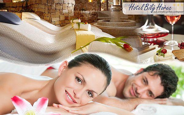 Luxusní wellness pobyt v SPA hotelu