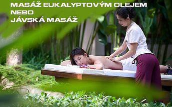 Thajská masáž 30/60 min. od 295 Kč!