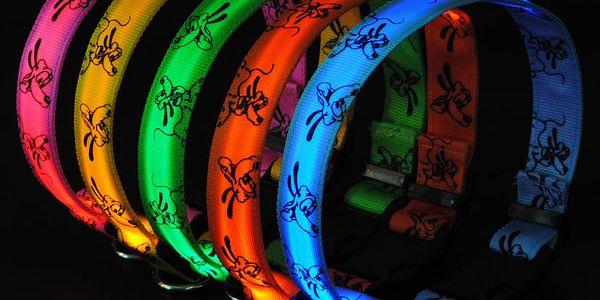Svítící LED obojek pro domácí mazlíčky - na výběr z 5 barev a poštovné ZDARMA! - 29602584
