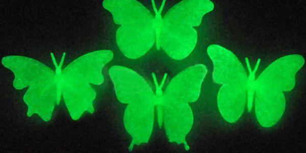 Fluorescentní motýlci na zeď a poštovné ZDARMA! - 35802881