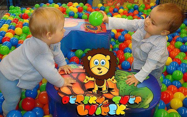 Celodenní vstup do báječného dětského světa Lvíček v Plzni