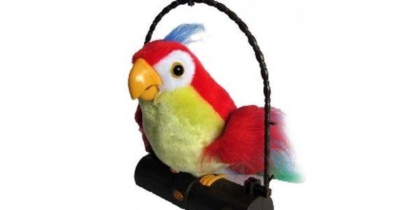 Mluvící papoušek co opakuje vaše slova! Skvělý dárek, skvělá zábava!
