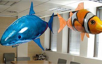 Létající ryba - ŽRALOK/ NEMO CLOWNFISH! Nechte si bytem proplout LÉTAJÍCÍ RYBU. Nabízíme tento hit AIR SWIMMER za pouhých 199 Kč, včetně doruční po ČR zdarma!!