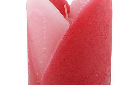 Svíčka Sunchi 6440 Tulipán II. růžová vanilka