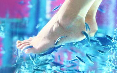 Příjemná a léčivá rybí pedikúra PRO DVA pomocí rybiček Garra Rufa. Dopřejte si relax, který léčí!