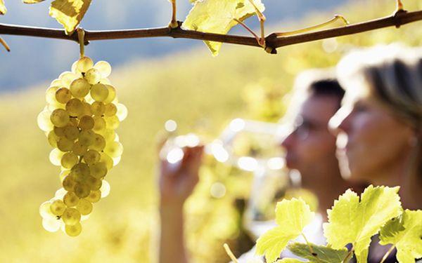 Vinařský pobyt na jižní Moravě pro DVA s neomezenou konzumací vína