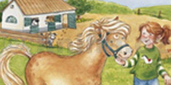 Katčin nový kůň