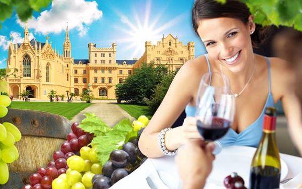 Lednicko-valtický areál a neomezené pití moravských vín. Odborná degustace s neomezenou konzumací vín ve vinném sklepě v penzionu Usedlost pod vinohrady s vyhřívaným bazénem. Prožijte 3 báječné dny v top vinařské oblasti!
