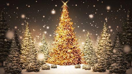 Až 140ks LED vianočné osvetlenie už od 6,90 € aj s poštovným