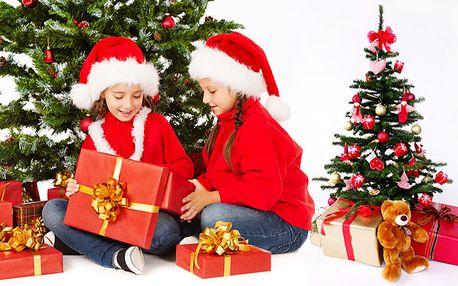 Vánoční stromky SMRKY