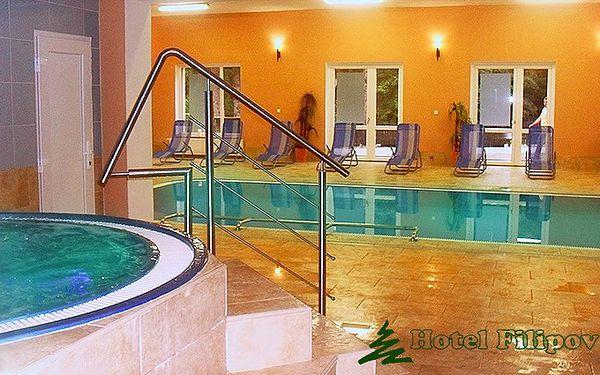 3 nebo 6 dní ve wellness hotelu Filipov pro dva s polopenzí