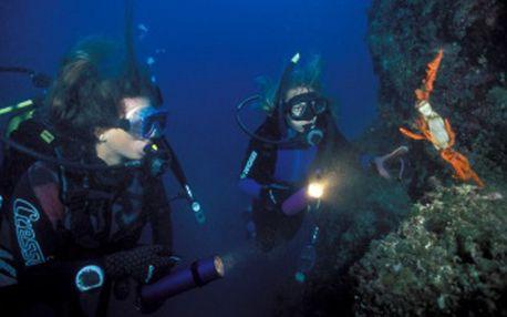 Týdenní kurz potápění v Chorvatsku jako součást aktivní dovolené! Certifikát s celoživotní a celosvětovou platností!