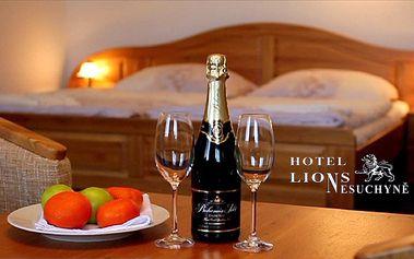 Odpočinek a relax před Silvestrem v hotelu Lions pro 1 osobu