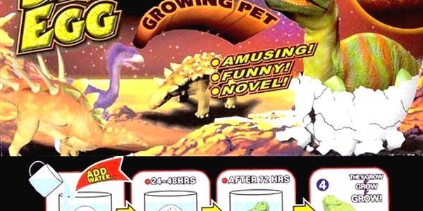 Dinosaurie vajce - za pár dní sa vám doma vyliahne prehistorický dinosaurus - 2 kusy len za 4,99€ aj s poštovným v cene