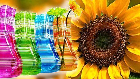 Proč utrácet za drahé skleněné vázy, když my Vám nabízíme jedinečné designové vázy, které jsou praktické, nerozbitné a hodí se do každého prostoru? Sada za výhodnou cenu!