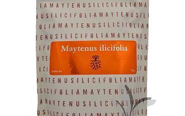 Energy Maytenus ilicifolia - bylinný čaj 105 g 2 balení