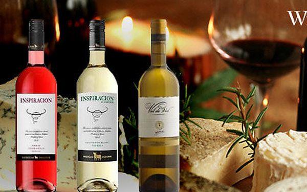 Balení 6 lahví výtečného španělského vína