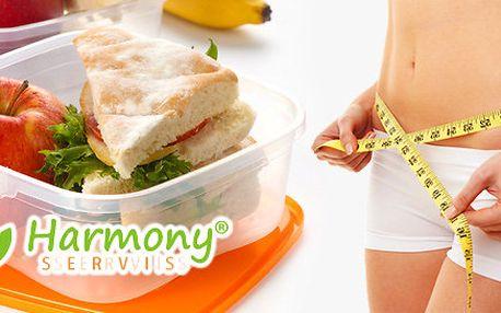 Kvalitní krabičková dieta Harmony Servis na 10 dní