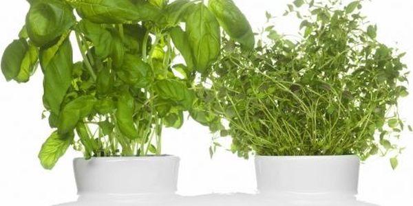 Květináč na bylinky Duo Herb, aby byly čerstvé bylinky hned po ruce