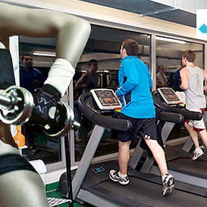 Celoroční přenosná permanentka do fitness