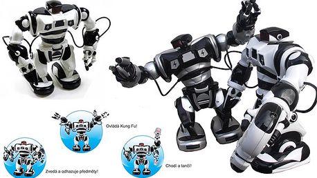 Inteligentní robot roboman