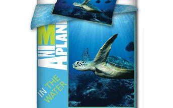 ANIMAL PLANET Povlečení Mořská želva bavlna 140 x 200 cm, 70 x 80 cm