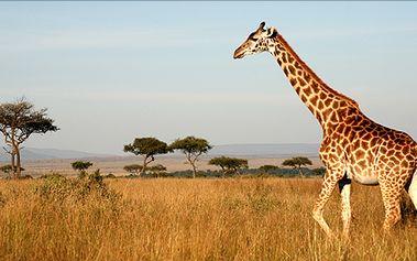 Exotická dovolená v Keni přímo na Silvestra! Letecký zájezd na 12 dní s polopenzí v termínu 28.12.-8.1.2014.