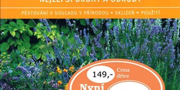Bylinky nejlepší druhy a odrůdy