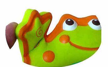 Žabí zrcátko