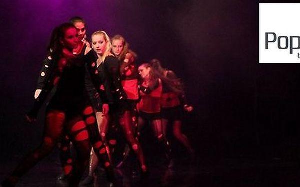Pop Balet 2013 - prezentační galavečer