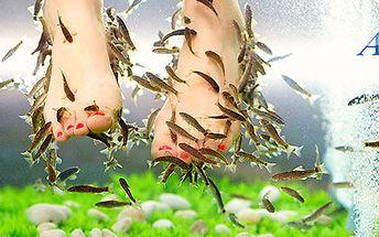 Jemná péče o nohy pomocí rybiček Garra rufa