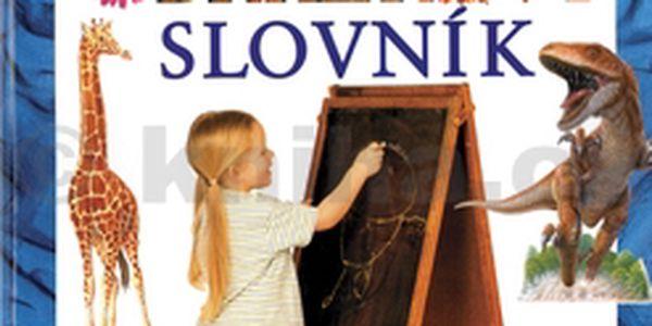 Můj první anglicko-český obrázkový slovník