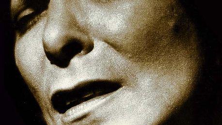 Hana Hegerová - Zlatá kolekce 1957-2010, 3 CD