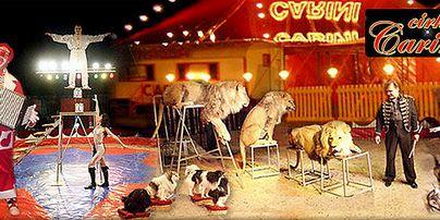 Cirkus Carini