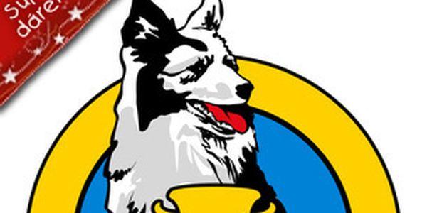 Kurz výcviku základní poslušnosti psa - 10 lekcí