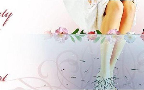 Praha - Za pouhých 99Kč se o Vaše nohy se postarají hejna rybiček GARRA - RUFA .Obtěžuje Vás lupénka, bradavice či jiná houbovitá kožní onemocnění a léky nepomáhají? Vyzkoušejte zcela novou, přírodní a velmi účinnou metodu terapie prostřednictvím rybiček Garra Rufa.