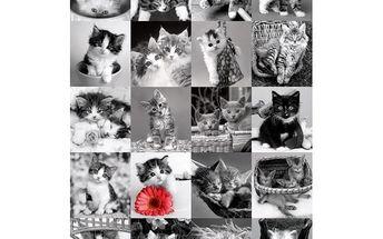 Puzzle DPZ 1500 Kočky
