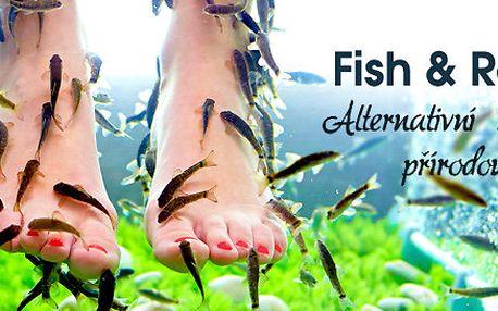 Půlhodinová lázeň s rybičkami Garra rufa