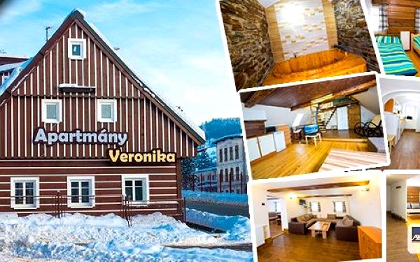 Vyrazte s rodinou nebo přáteli na hory! Ubytování na dvě noci pro 2 - 6 osob vapartmánech Veronika vRokytnici nad Jizerou s úžasnou slevou.