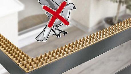 Obrana proti holubům